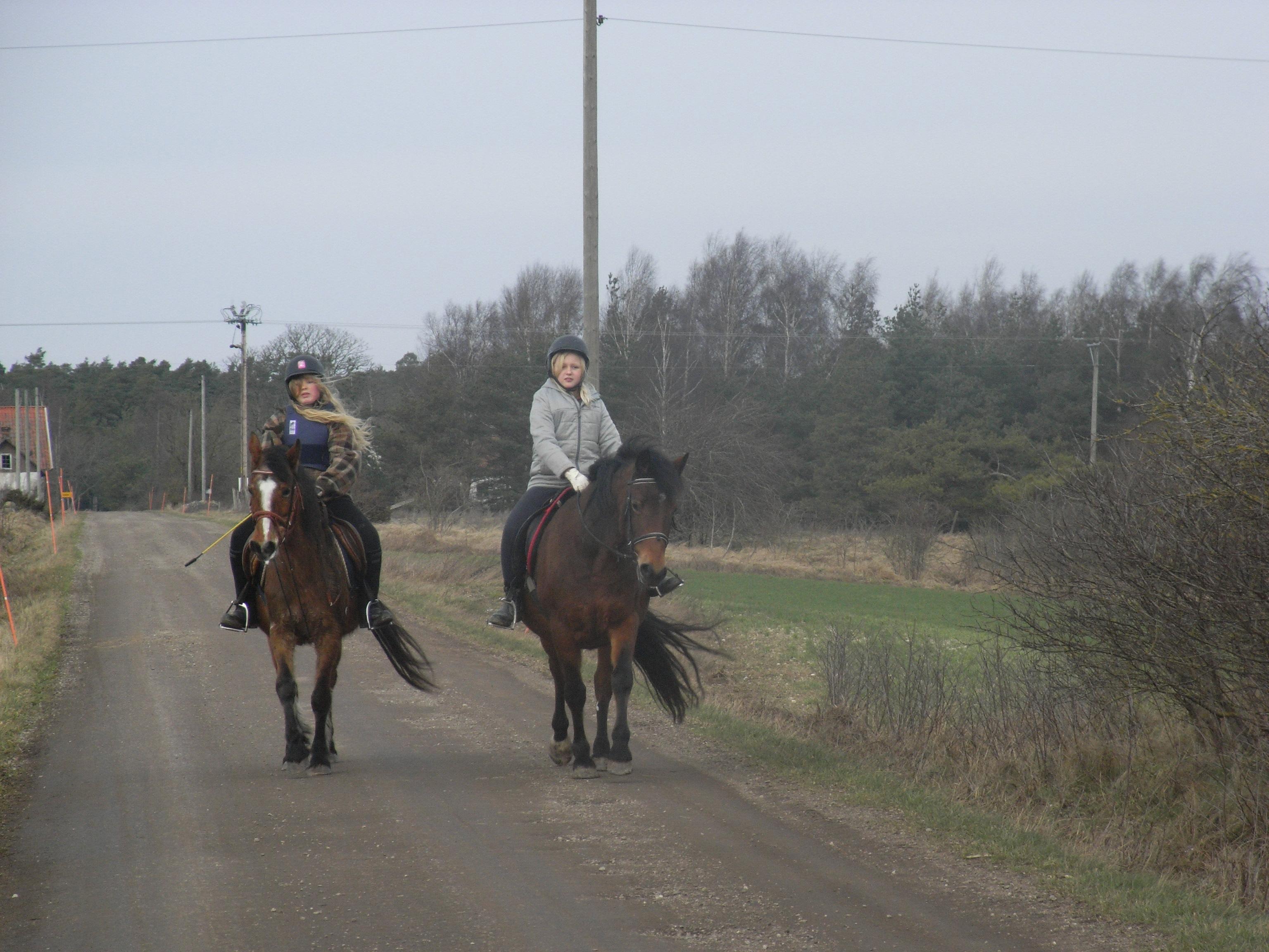 Båda våra ponnysar