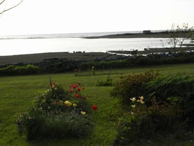 Trädgård Långhammars