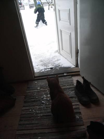 Elof tycker snö är kallt